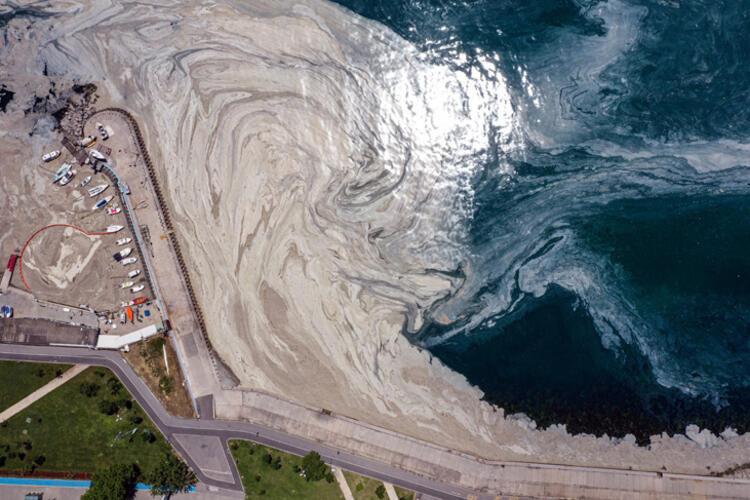 marmara denizi musilaj